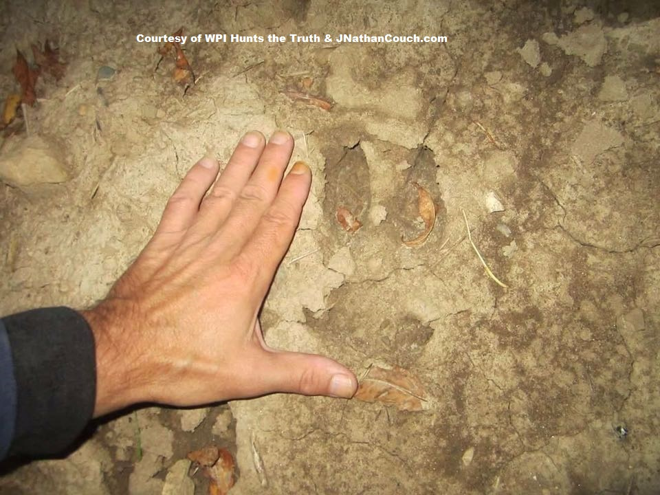 Goatman hoof print in Oak Creek, Wisconsin
